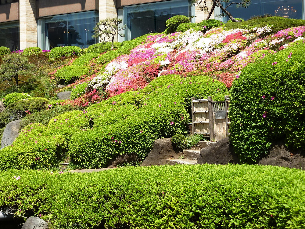 Karikomi in an ancient garden incorporated into a modern hotel grounds, Tokyo