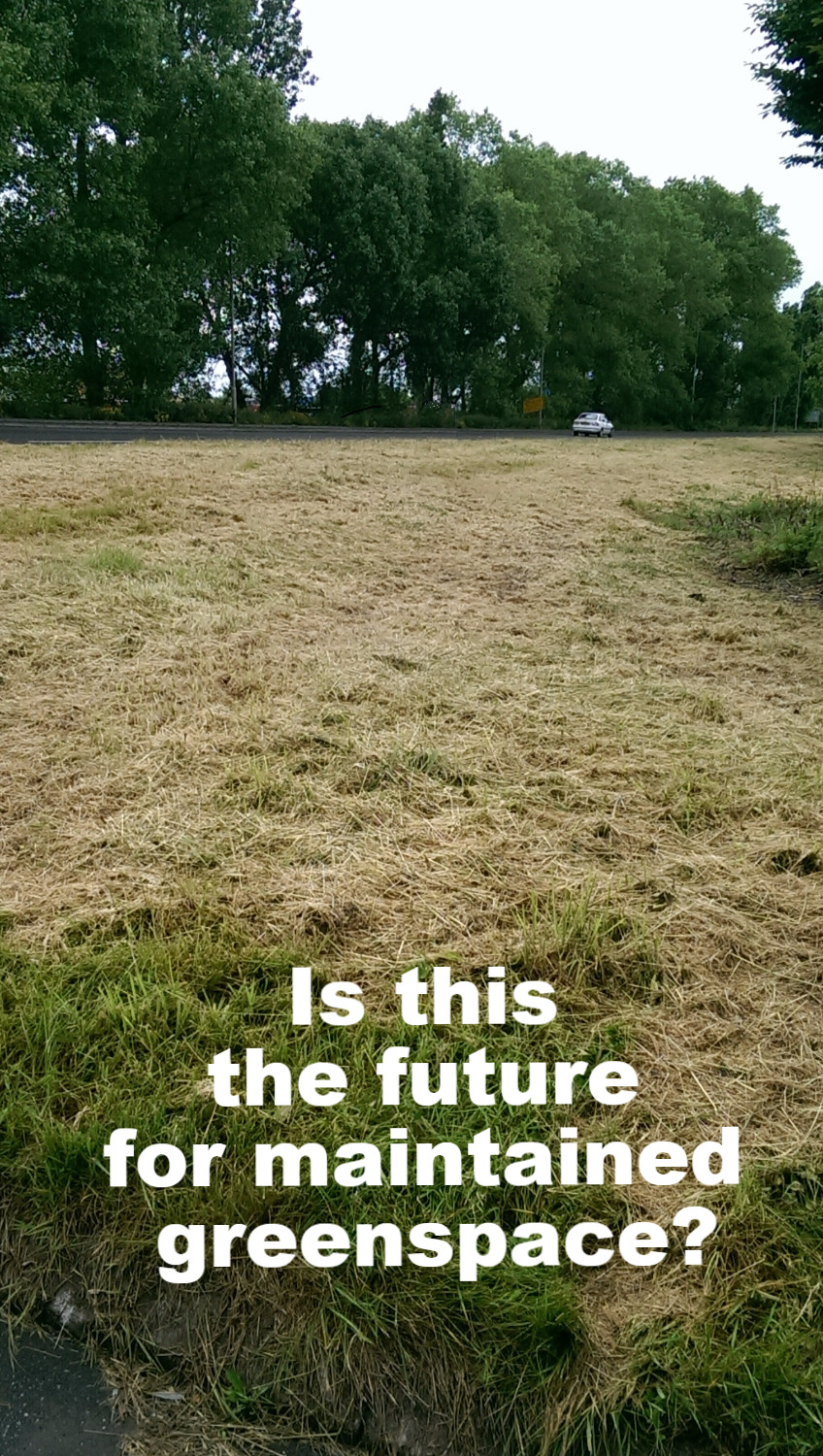 Green Space grass cutting in Leicestershire
