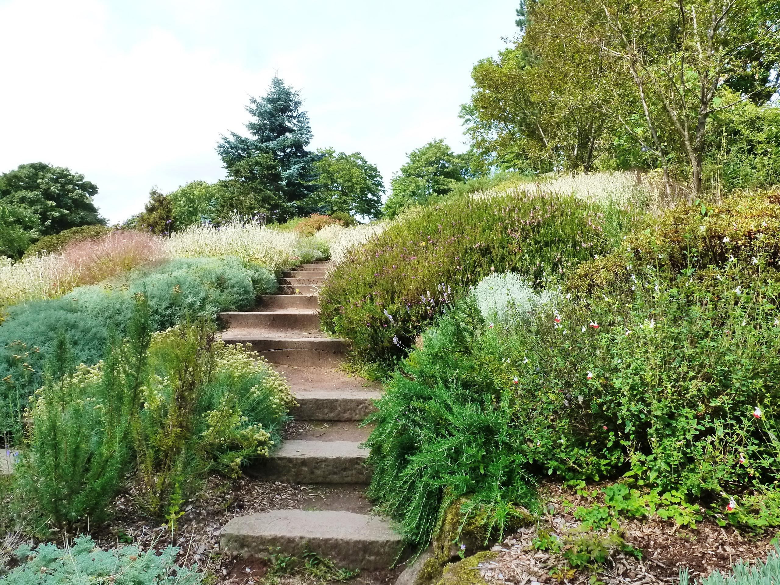 Rock Garden, Ness Botanic Garden