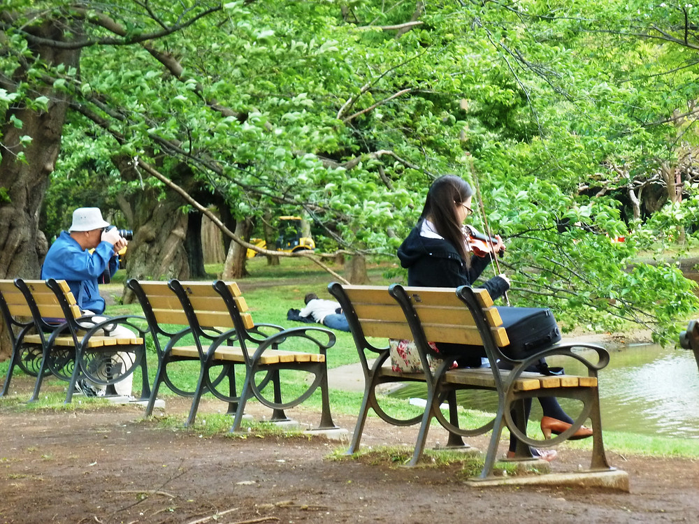 Yoyogi Park Tokyo, a park alive with people and activity