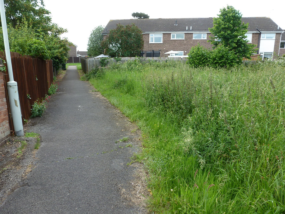 Annual cutting may be the future for many green spaces
