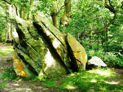 Pre-Cambrian outcrop, The Outwoods, Charnwood Forest