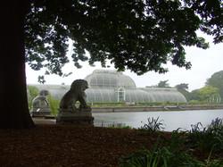 Decimus Burton and Richard Turner's Palm House Kew Gardens