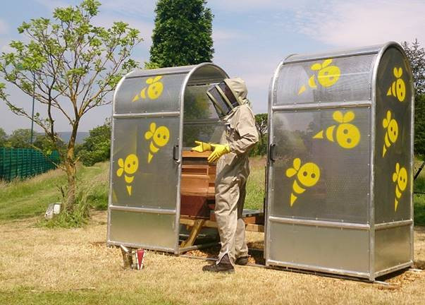 The world's first urban bee cages in a Burnley park