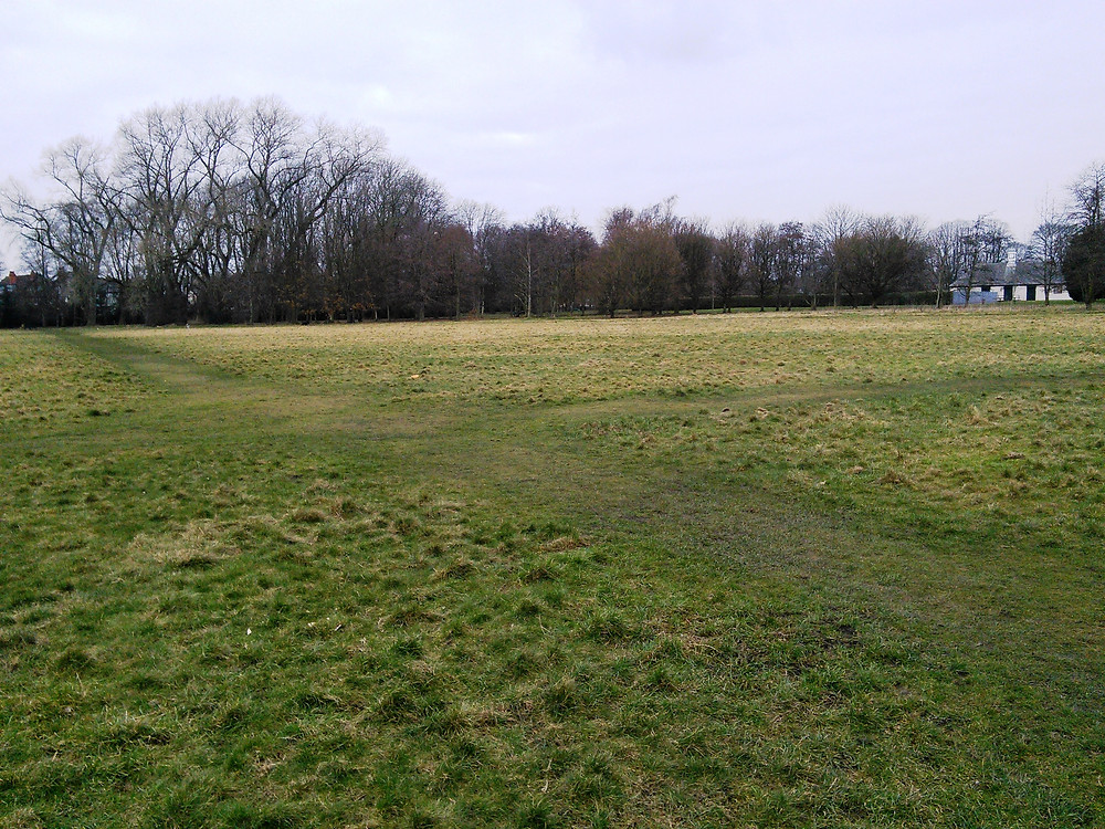 Sports pitches reverting to grassland regime