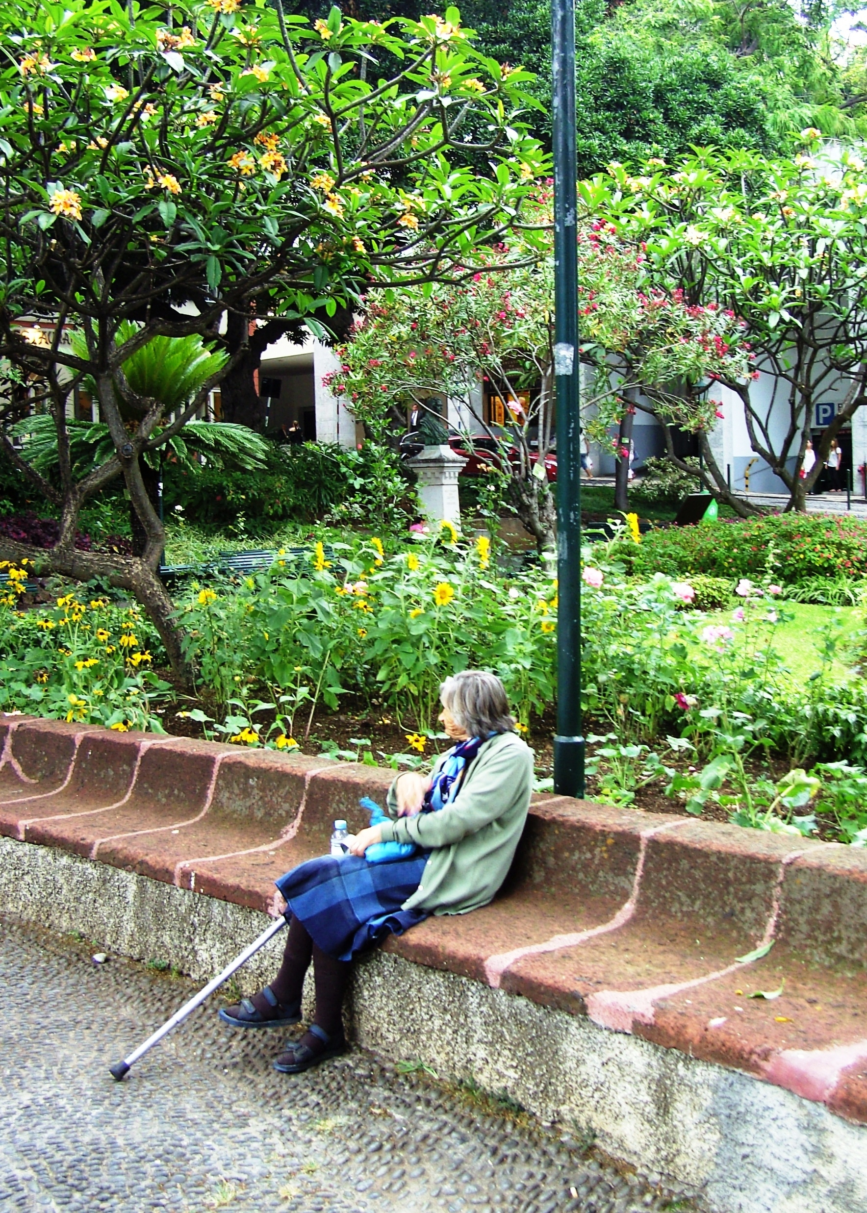 Parks are for Everyone, Municipal Gardens, Funchal Madeira