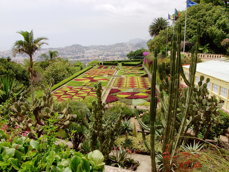 Botanic Garden Madeira 2