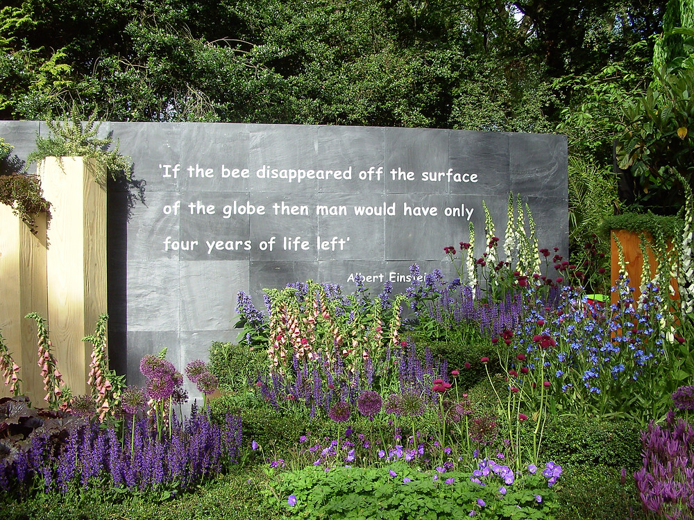 Wildlife garden at the Chelsea Flower Show