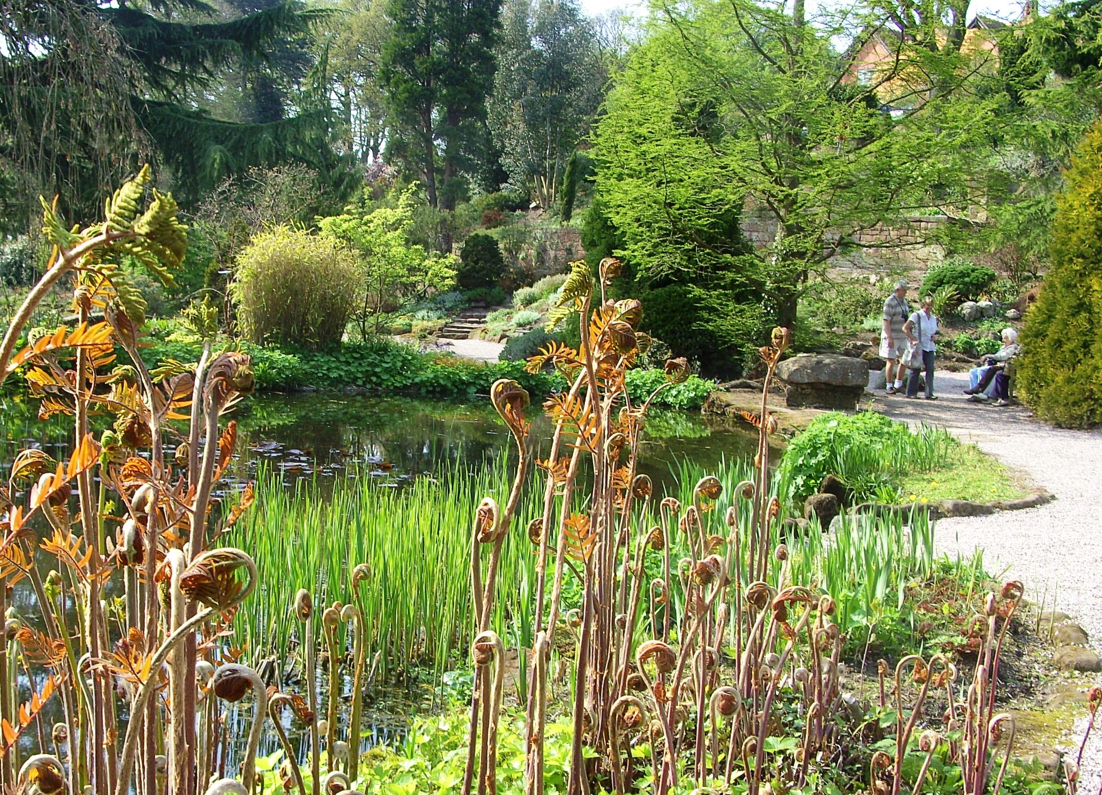 Biophilia at Ness Botanic Gardens, Cheshire