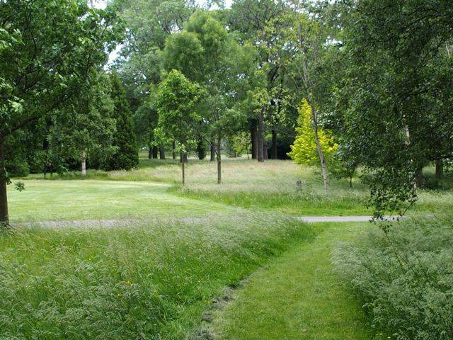 Long grass regimes in a Burnley Green Flag park