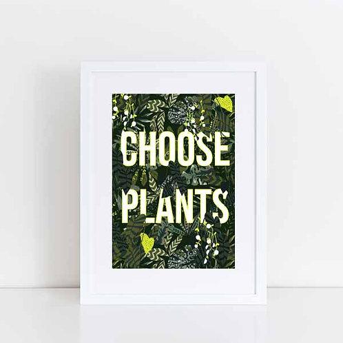 Choose plants
