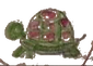 Samantha-Turtle-001.png
