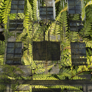Tall abandoned building with ferns