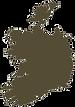 map-ireland-vector-20423661_edited_edite