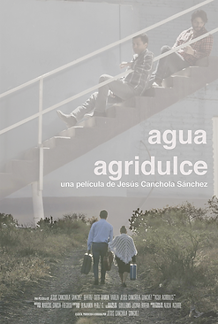 poster_oficial_ESPAÑOL_SMALL.png
