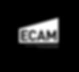 ECAM.png