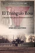 TRIANGULO ROSA POSTER