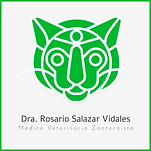 doctora rosario .png