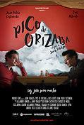 Pico_poster_ESP.jpg