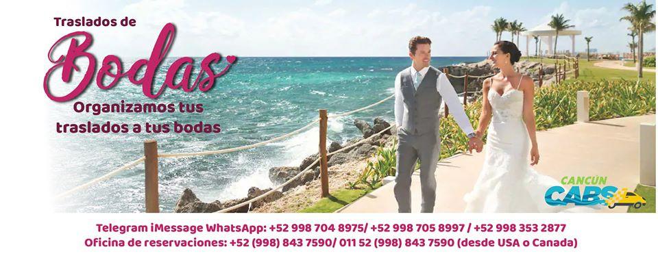 90766421_503425133667121_662681543883777