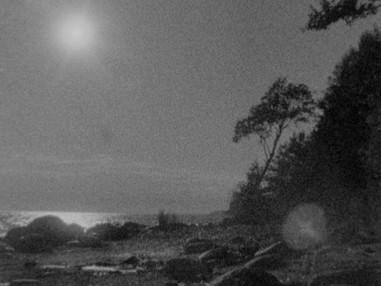 Moonlight People