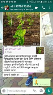 Farmer's positive feedback