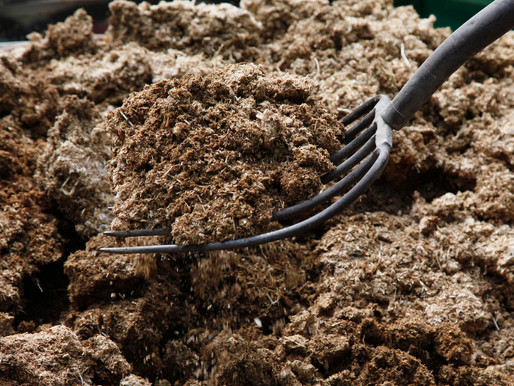 Manure - How is it benficial? What are it's types?