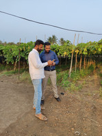 Farmer interview