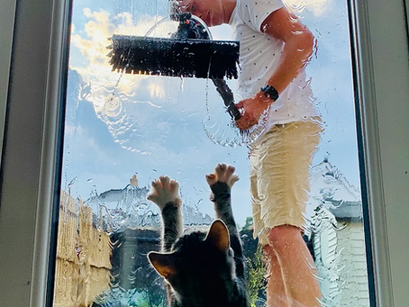 Jake Austin Window Cleaning Services