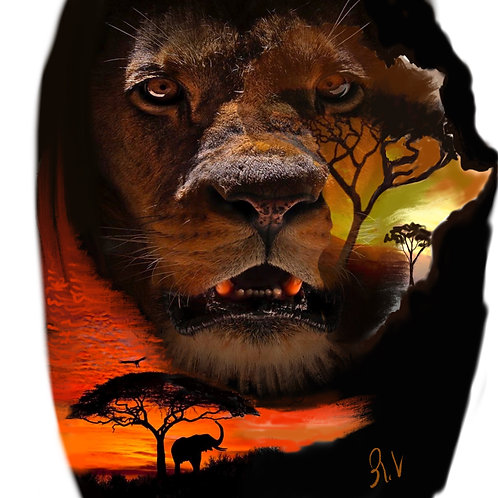 The King of Africa