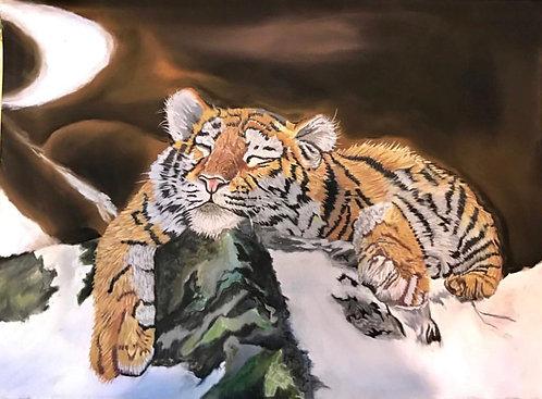 Tiger Balu