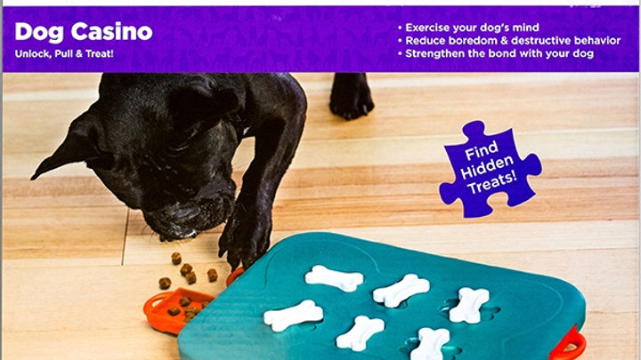 Sausage Dog Box Nina Ottosson Dog Casino Toy