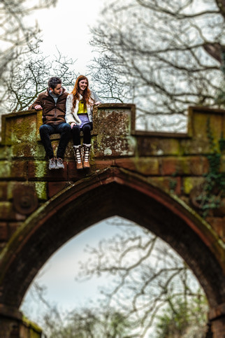 Engagement Himley House