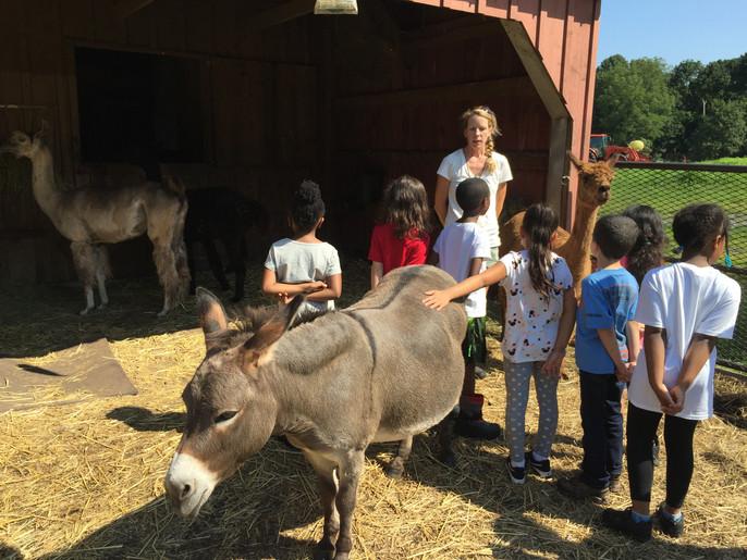 Kids with Mia and llama.jpg