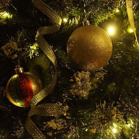 christmas-tree-crop-708002_960_720.jpg