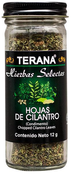HOJAS DE CILANTRO
