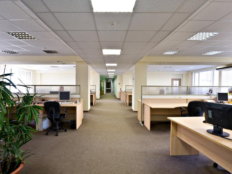clean carpet in cubicle area