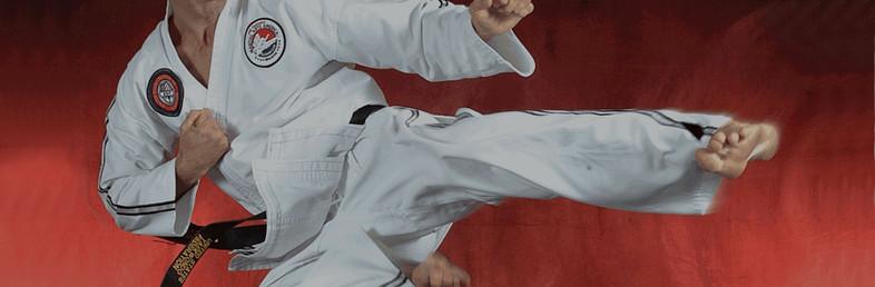Martial Arts America   Scotch Plains, NJ