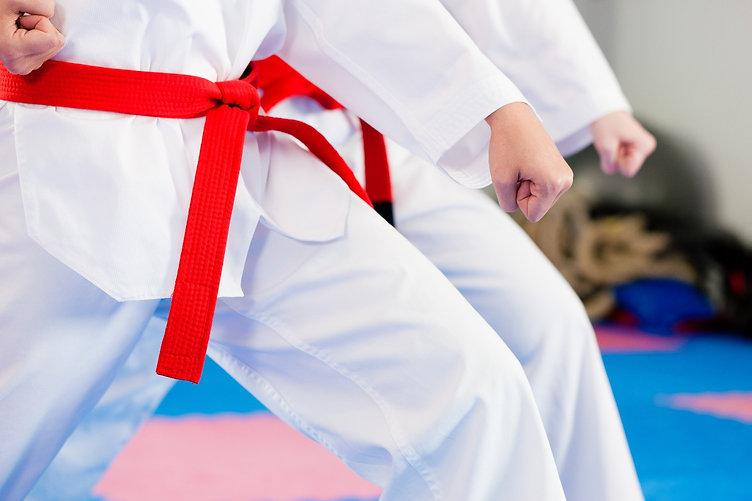 taekwondo-stance-red-belt.jpg