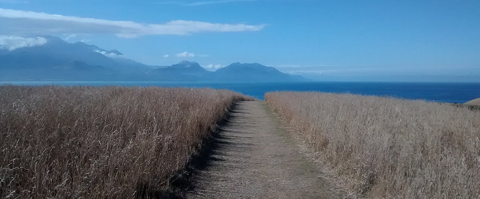 calm, peaceful view of path down to sea, with mountains on the horizon. Clear blue sky and sea.