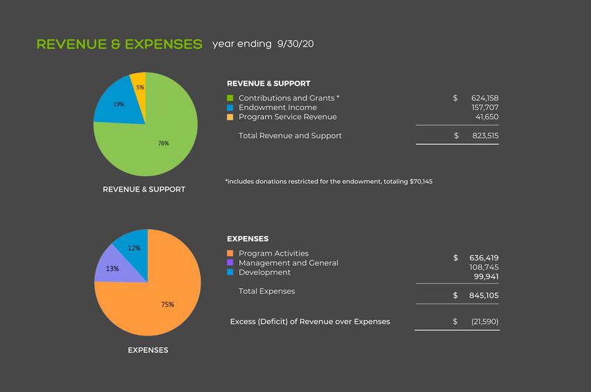 2020 Annual Report Financials Pt.2 (Maria).png