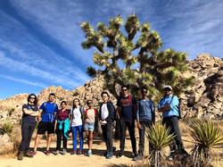 Joshua Tree Camping trip