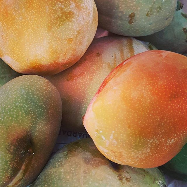 Freshly-picked #mangoes  Delicious!_._
