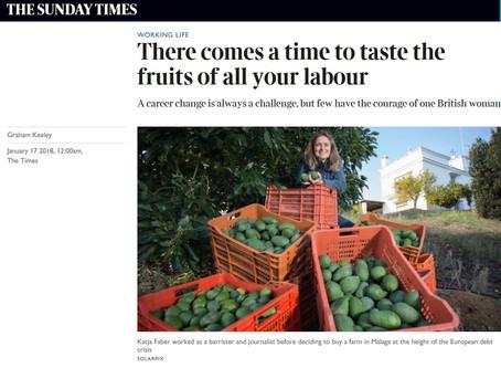 Hacienda La Bonita is featured in The Times.