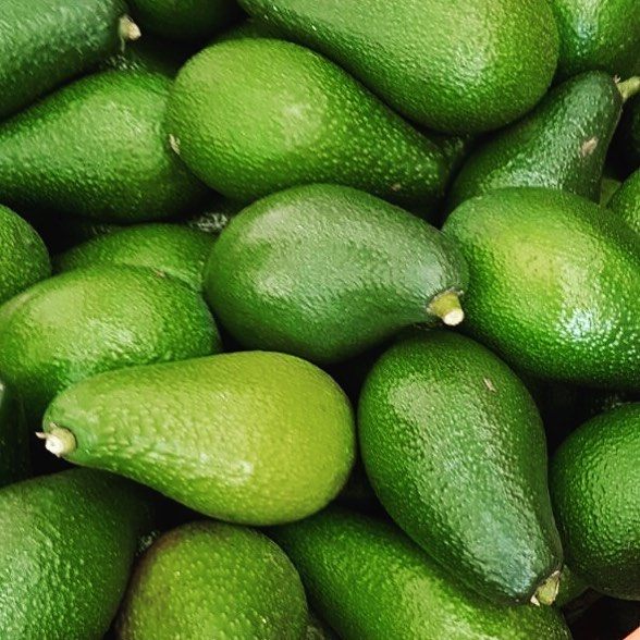 How many avocados could you eat!_ 🥑🥑🥑🥑_._._