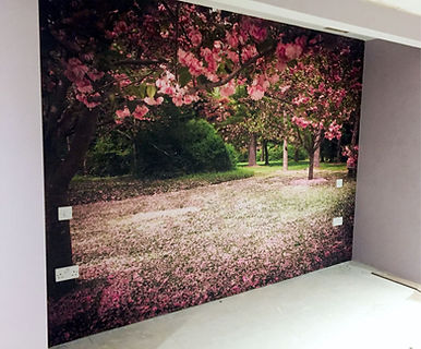 Ruby wallpaper.jpg