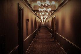 architecture-carpet-chandeliers-573552.j