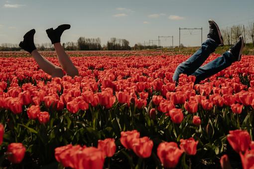 FLOWER FIELDS PHOTOGRAPHY framedbyemily