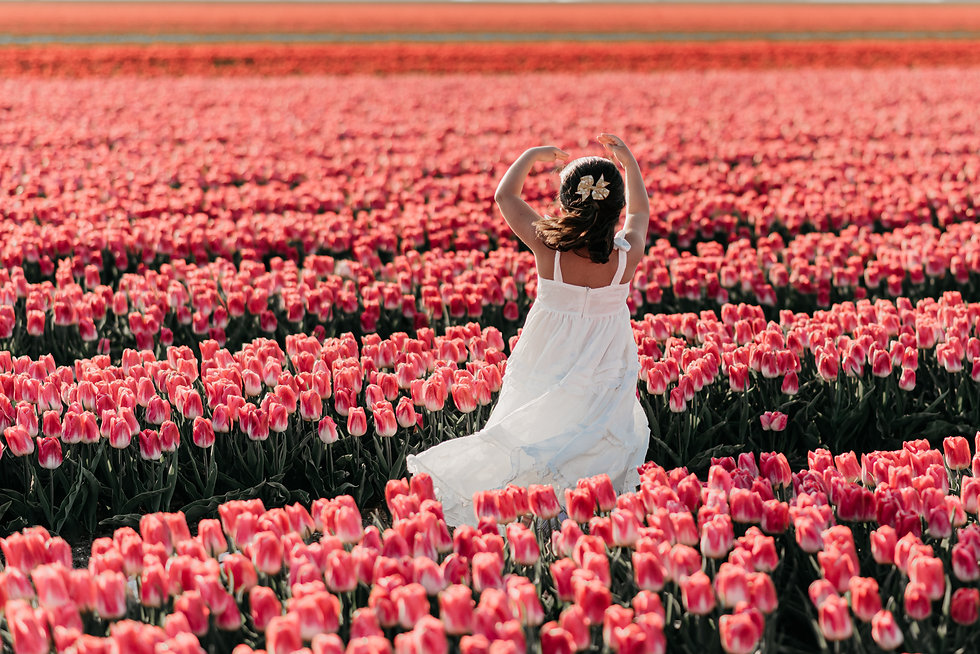 Flower Field Photography in Amsterdam fr