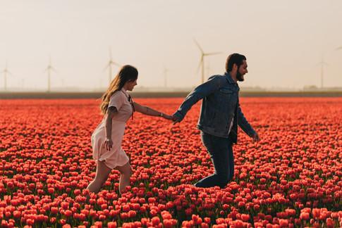 Flower Field Photography